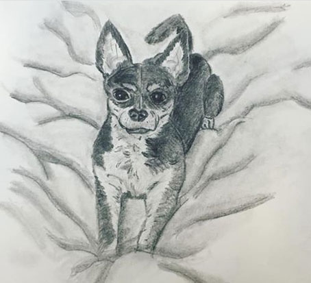 Drawing of a little dog on a soft pillow.